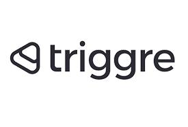 Logo Triggre website IIF